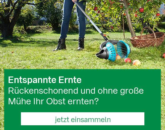 Mobil_StartseitenBanner_Obsternte_201909.jpg