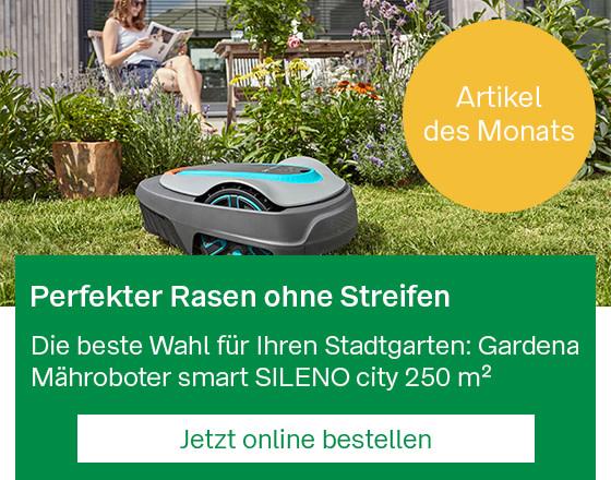 Mobil_StartseitenBanner_Online-Knaller_2106.jpg