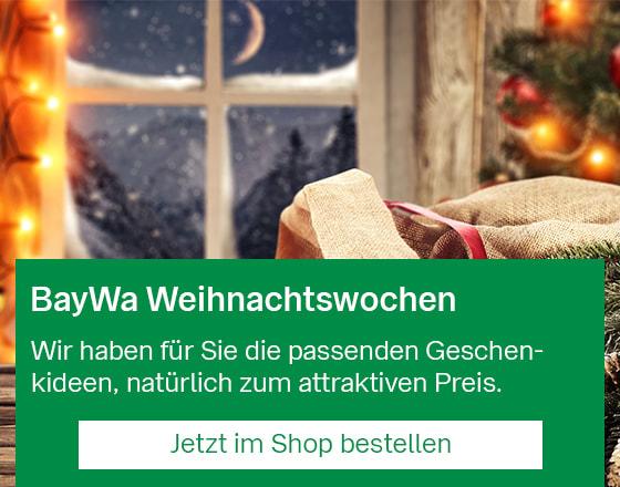 Mobil_StartseitenBanner_Weihnachtswochen_201912.jpg
