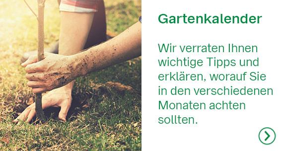 ServiceTeaser_NEU_Gartenkalender_2002_580x304.jpg