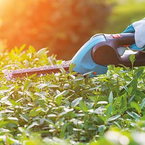 Teaser-Garten-Gartengeraete_3_300x300.jpg