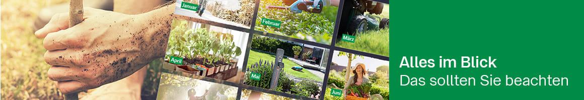 Teaser_Fakten_Gartenkalender_1160x200.jpg