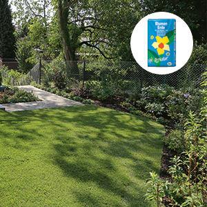 Teaser-Garten-Gartenerden_Rasensamen_300x300.jpg