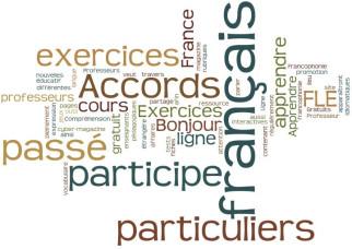 Accords Particuliers Du Participe Passe