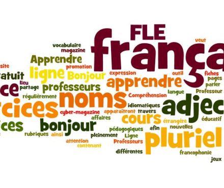 La Formation Du Pluriel Des Noms Et Des Adjectifs