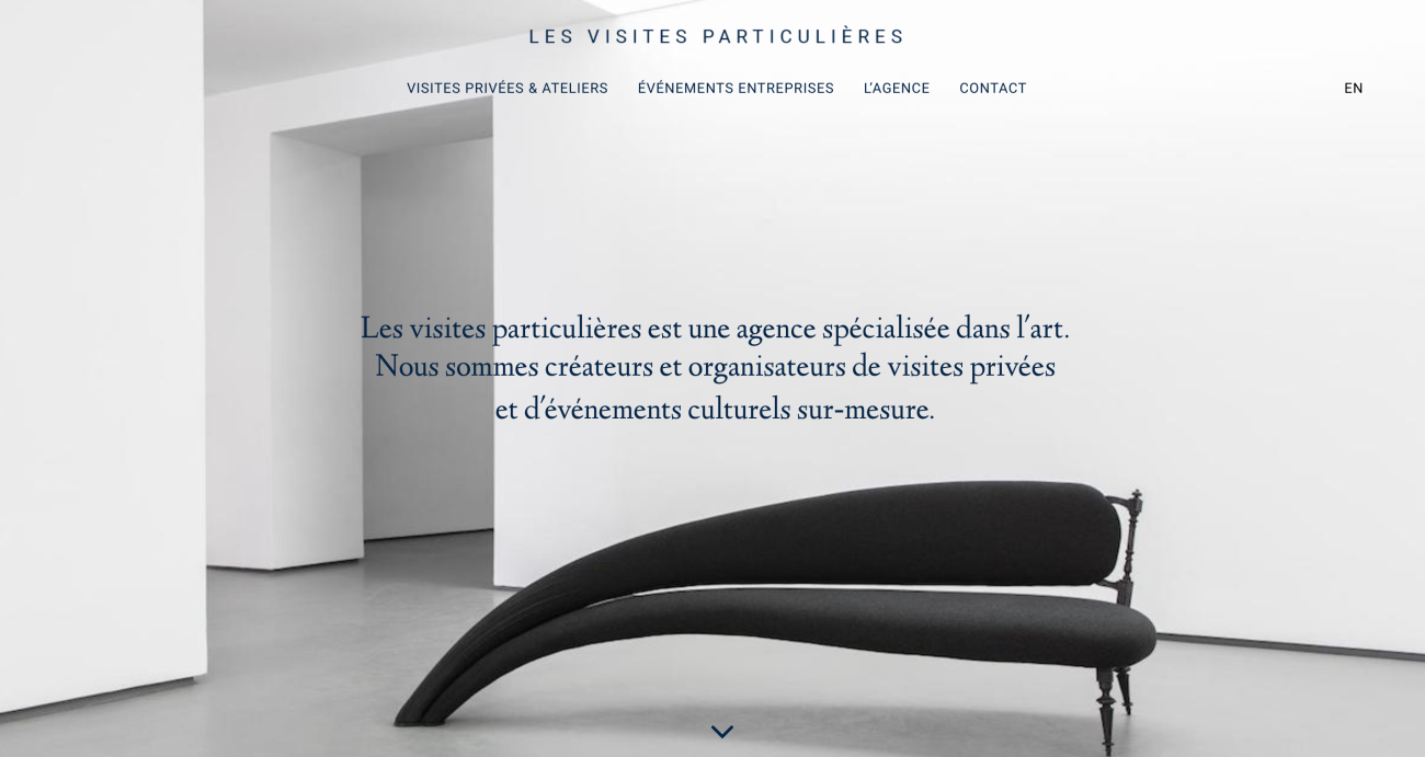 lesvisitesparticulieres-website-screenshot