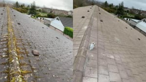 Cork Commercial Roof Cleaning
