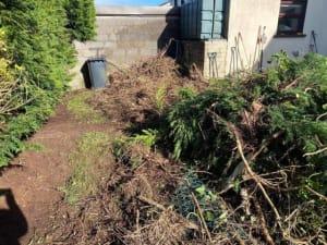 Hedge Trimming Cork