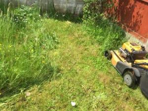 Garden Maintenance Cork
