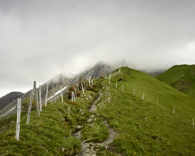 A hiking trail near the top of a mountain heads up into the clouds above