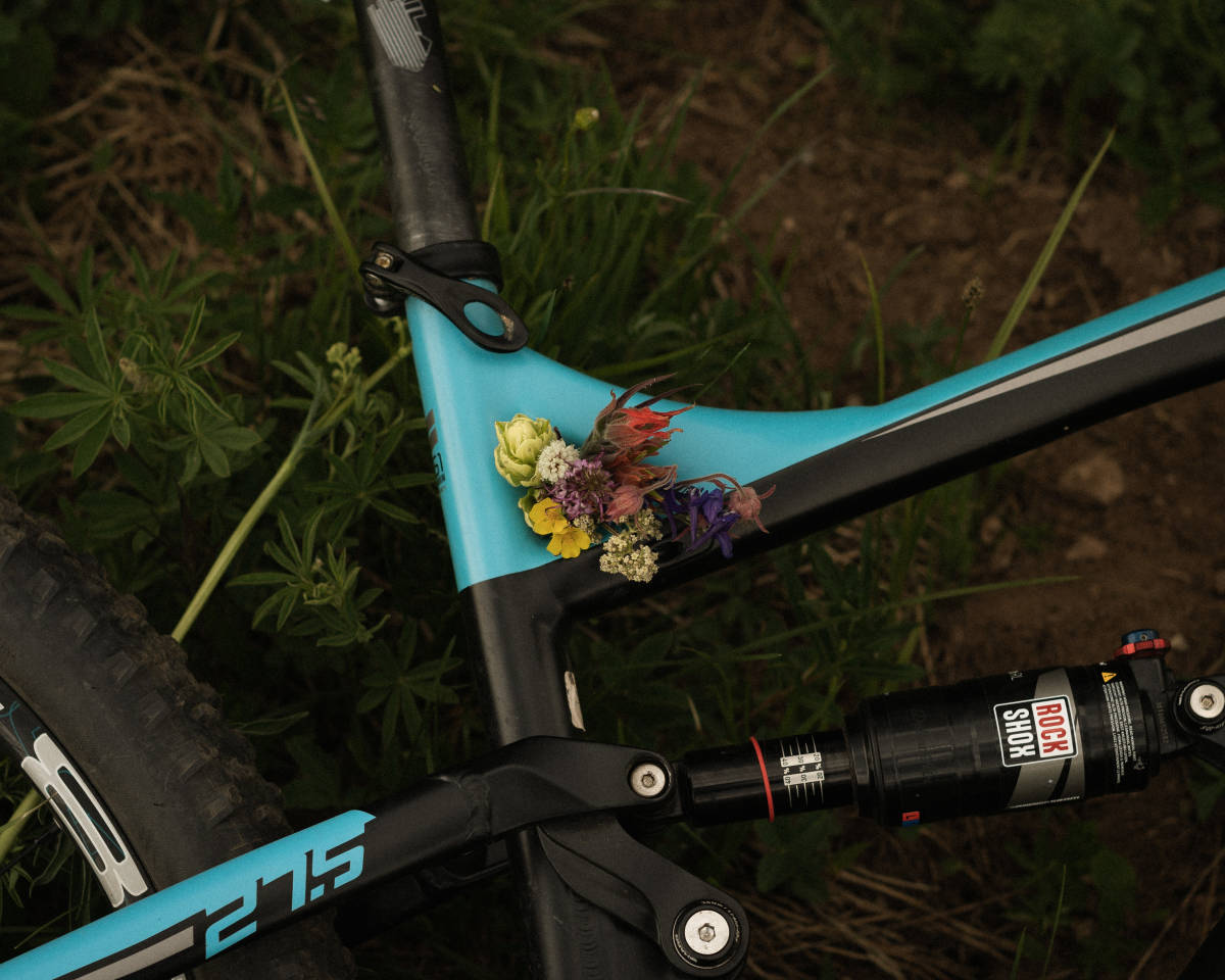 Flowers collected inside a bike frame.