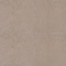 Reefstone in Beige Coral 24x24-also in 2cm paver