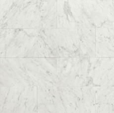 White Carrara 12x24 Honed Marble
