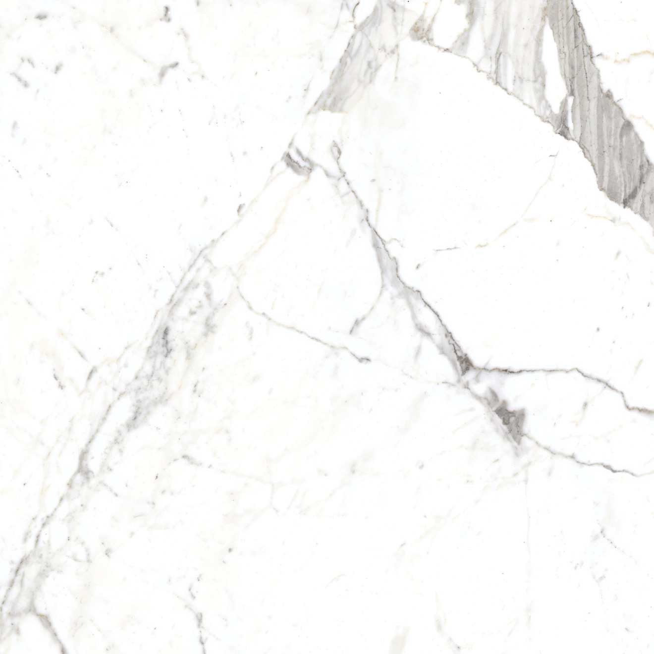 Magnifica 30 X 30 Floor Wall Tile In Statuarietto Bedrosians Tile Stone