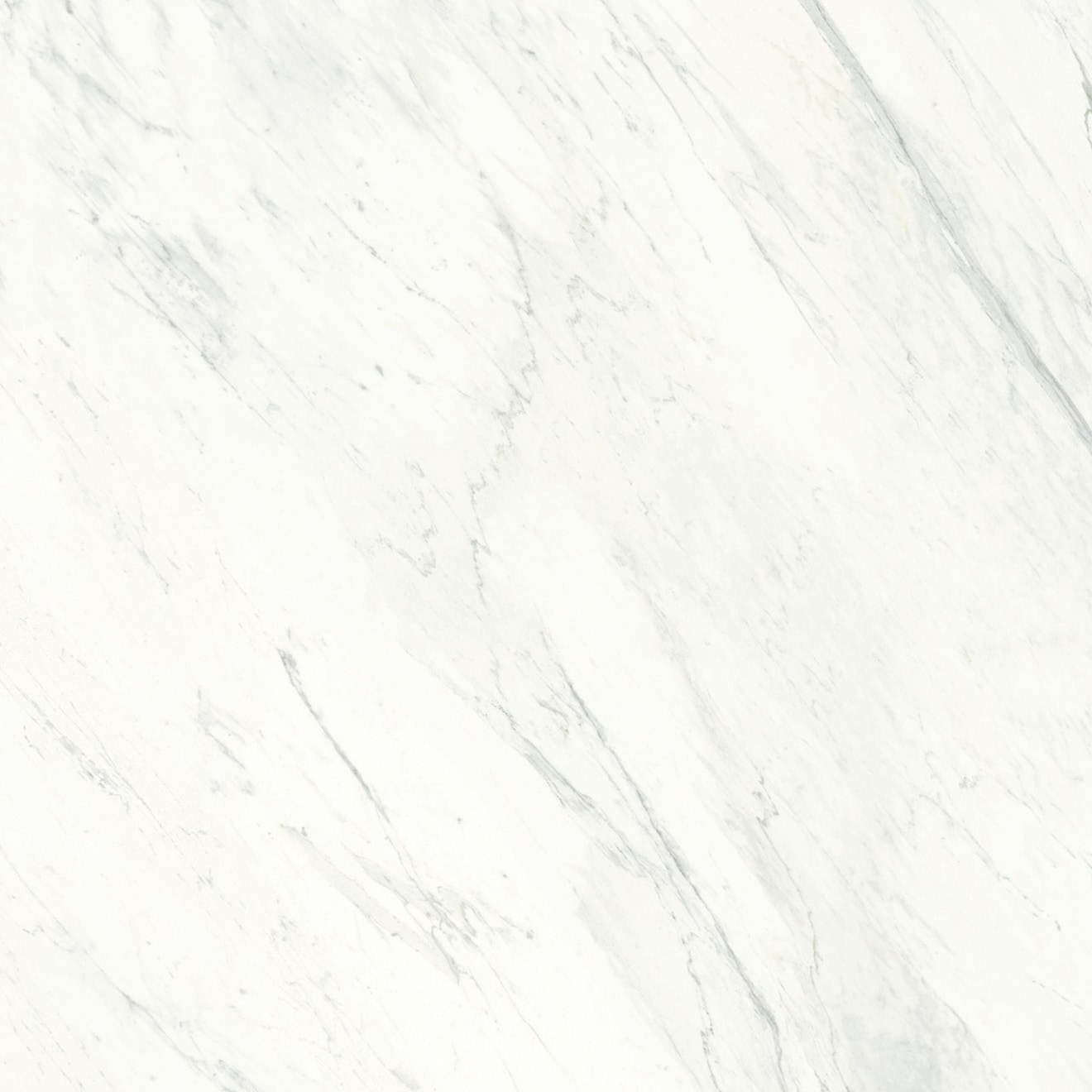 Magnifica Luxe White Porcelain in 1/4