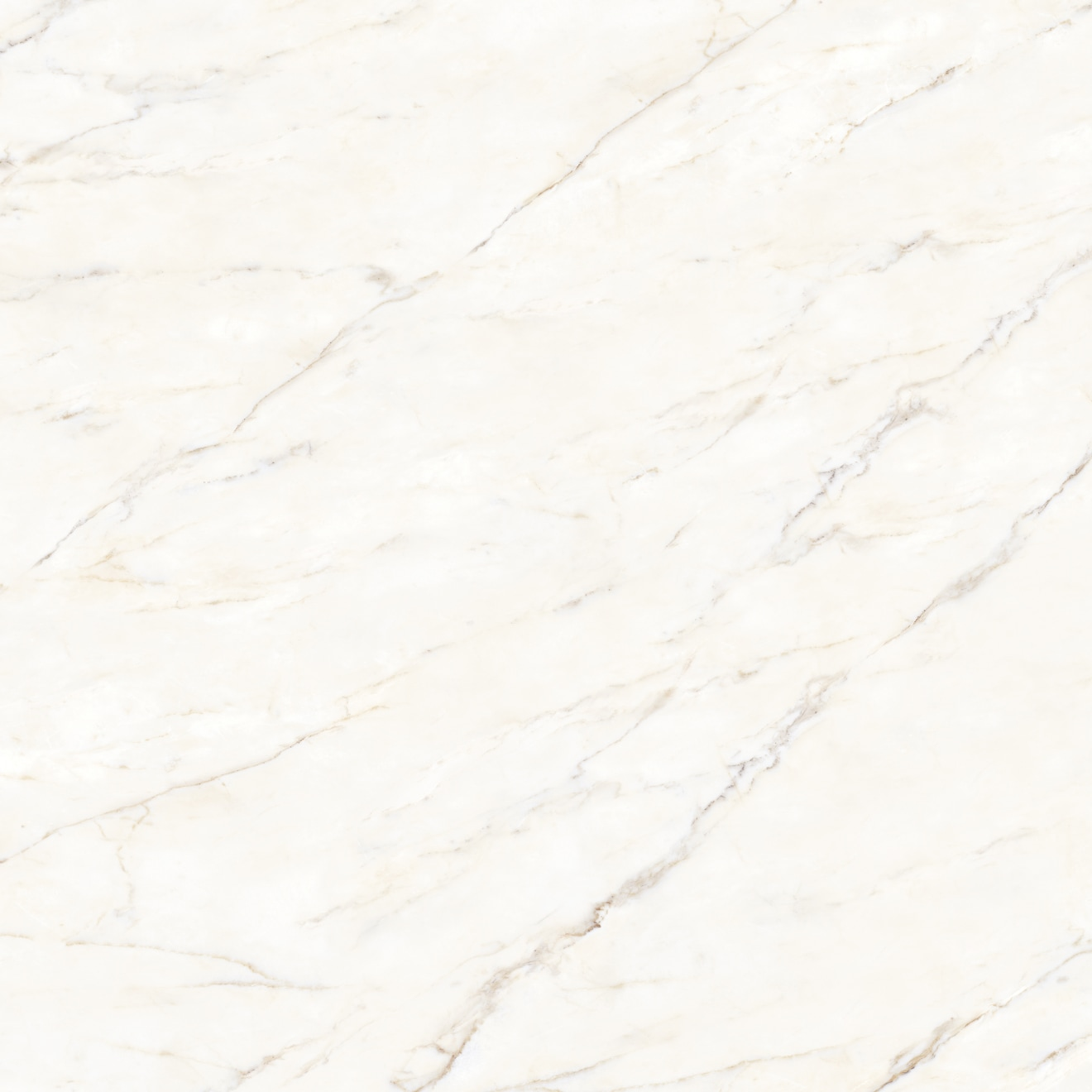 Magnifica 30 X 30 Floor Wall Tile In Calacatta Oro Bedrosians Tile Stone