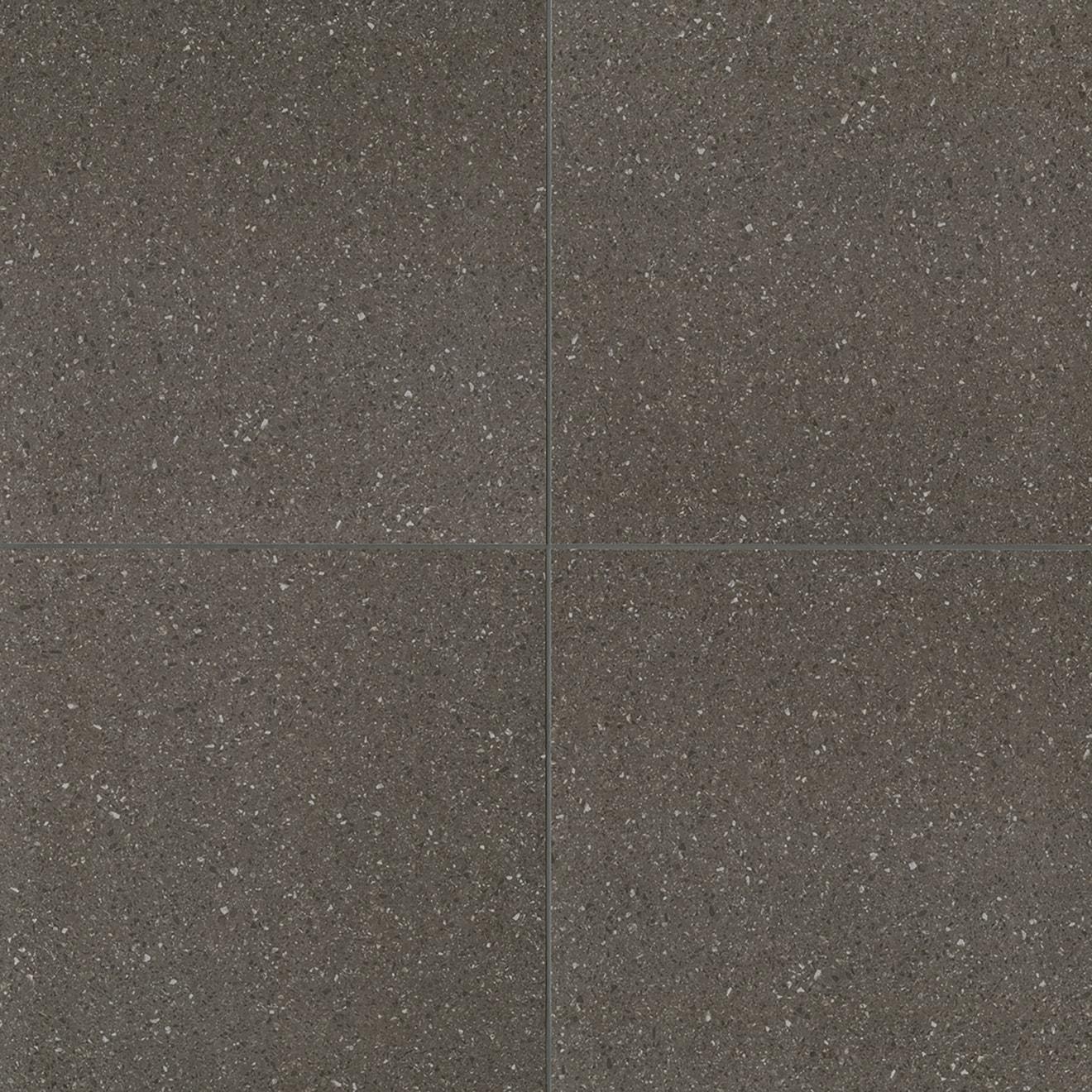Terrazzo 10 X 10 Floor Wall Tile In Dark Gray