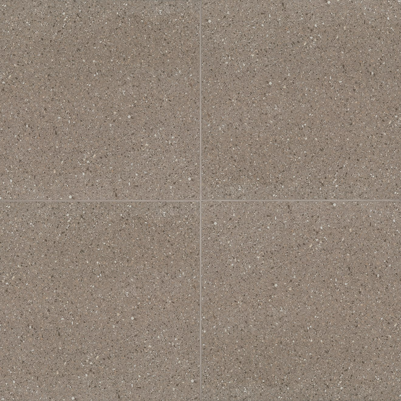 Terrazzo 10 X 10 Floor Wall Tile In Medium Gray