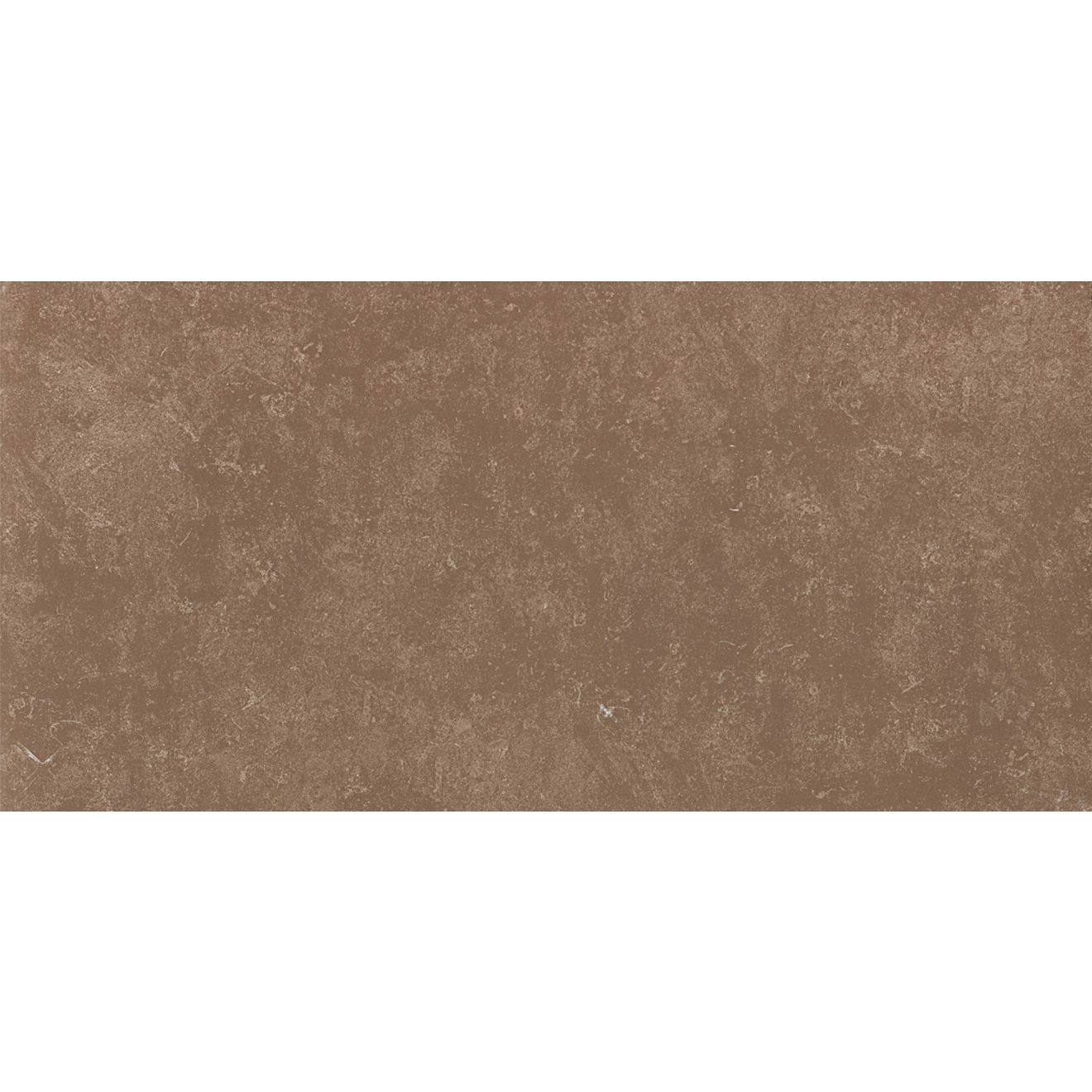 "Ararat 12""x24"" Porcelain Floor & Wall Tile in Mocha"