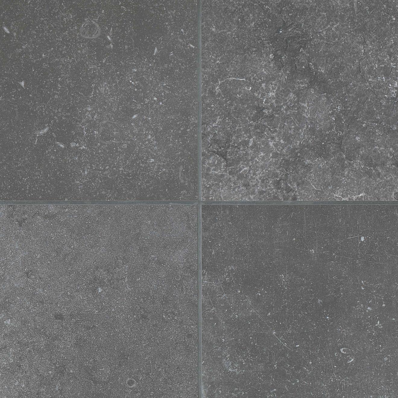 """Blues 12"""" x 12"""" Floor & Wall Tile in Ego"""