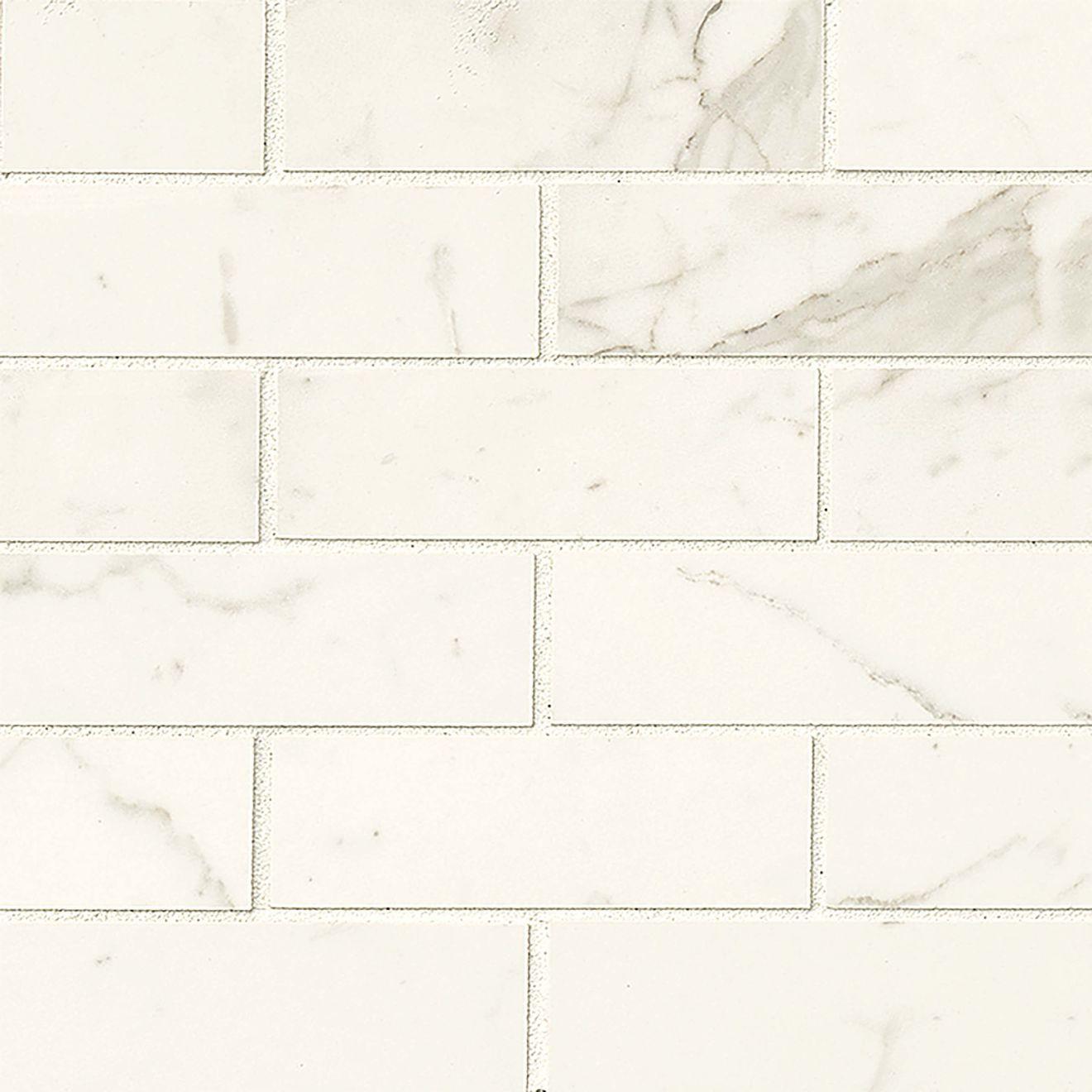 "Classic 2"" x 6"" Floor & Wall Mosaic in Statuarietto"