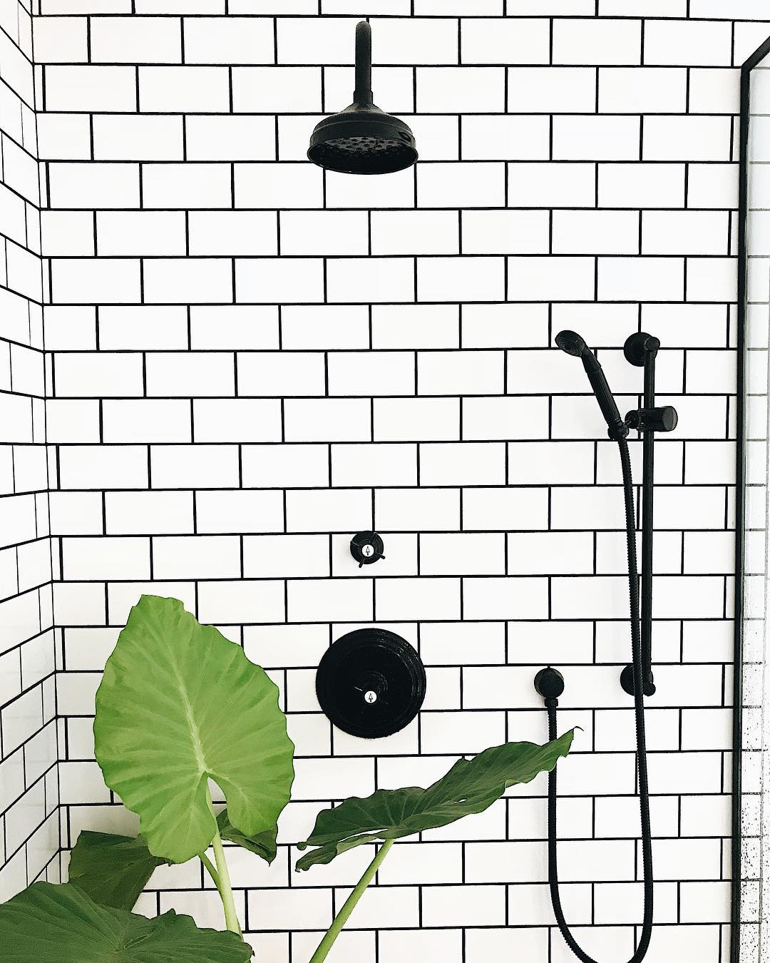 Black grout with white tile