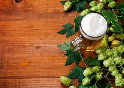 Beer hops on a tasting board