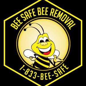 sbee safe bee removal argyle