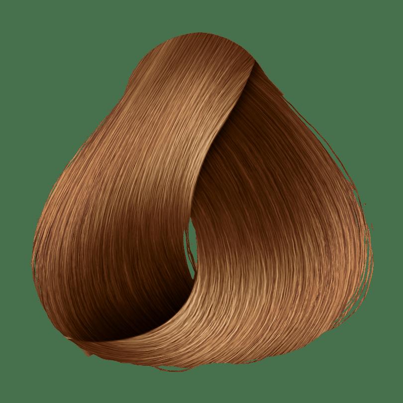 DutyColor 7.7 Marrom Dourado - Coloração Permanente
