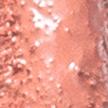 Dailus Nude 15 Feita de Verdades - Batom Líquido 4ml