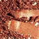 Sombra Refil Metalizada Cobreluz 1,5g