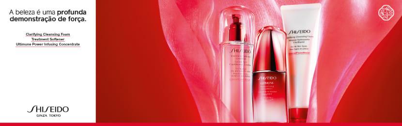 Maquiagem Shiseido para Sobrancelhas