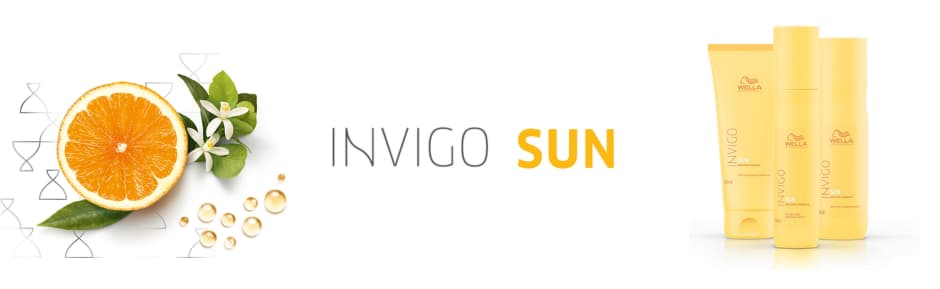 Internal: Invigo SUN