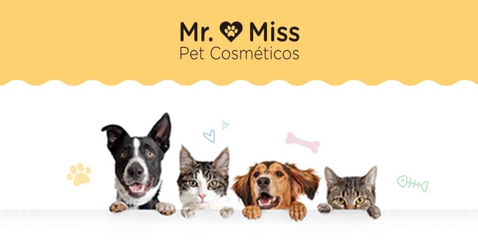 Banner Mr. & Miss Pet