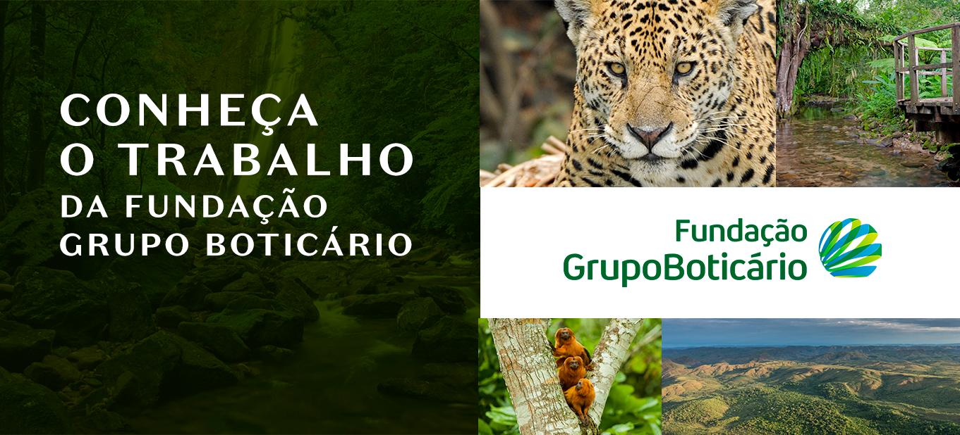 Fundação Grupo Boticário: há mais de 30 anos atuando na proteção  da natureza