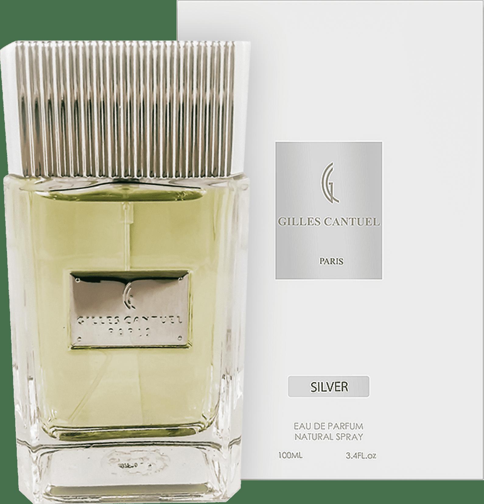 115a562a3d Gilles Cantuel Silver Arsenal Eau de Parfum - Perfume Masculino 100ml