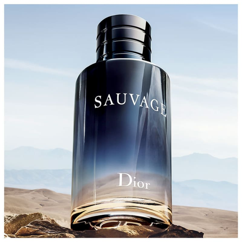ff1cfc2cfe Sauvage Dior Eau de Toilette - Perfume Masculino 100ml
