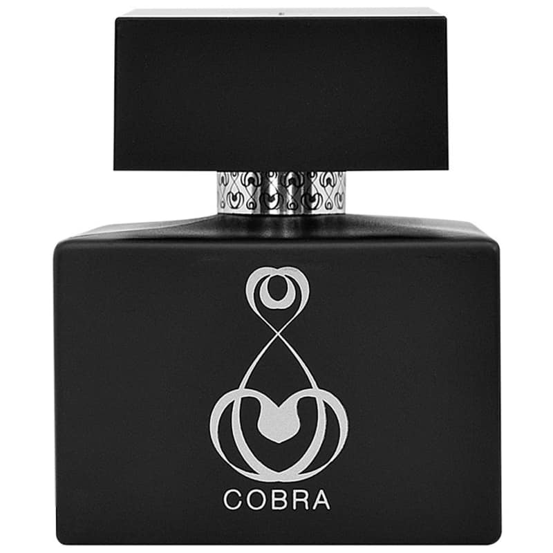 Cobra Jeanne Arthes Eau de Toilette - Perfume Masculino 100ml