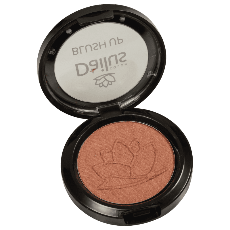Dailus Up 12 Chocolate - Blush em Pó 4,5g