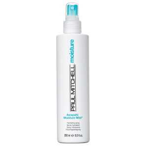 Leave-in Paul Mitchell