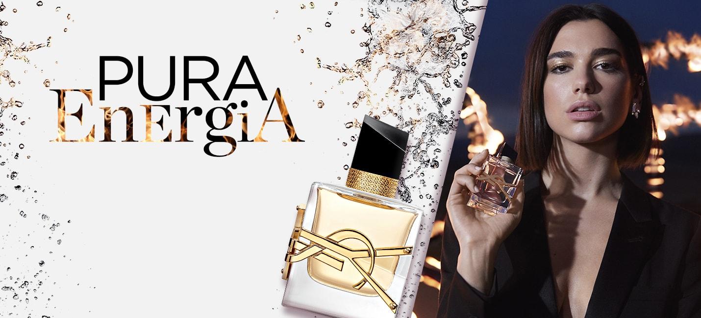 O que é o perfume fougère?