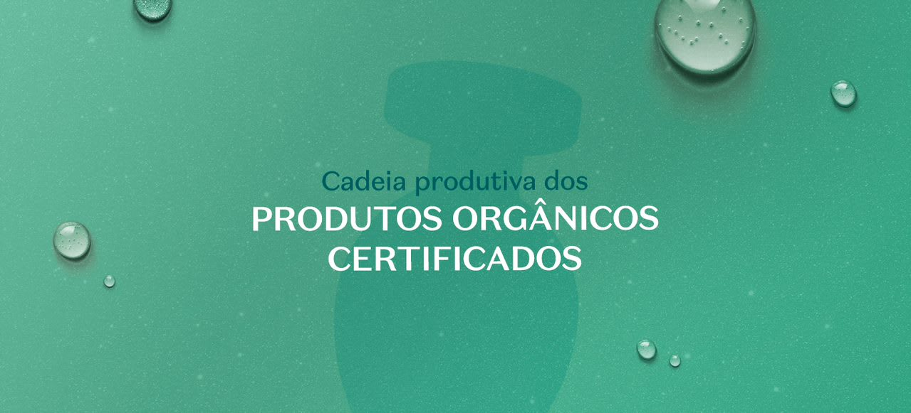 Saiba como funciona a cadeia produtiva dos cosméticos orgânicos