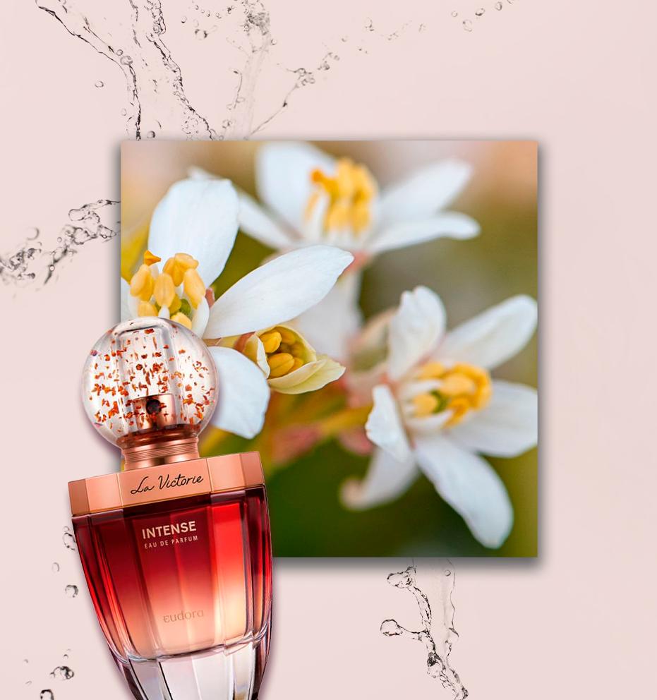 perfume com flor de laranjeira