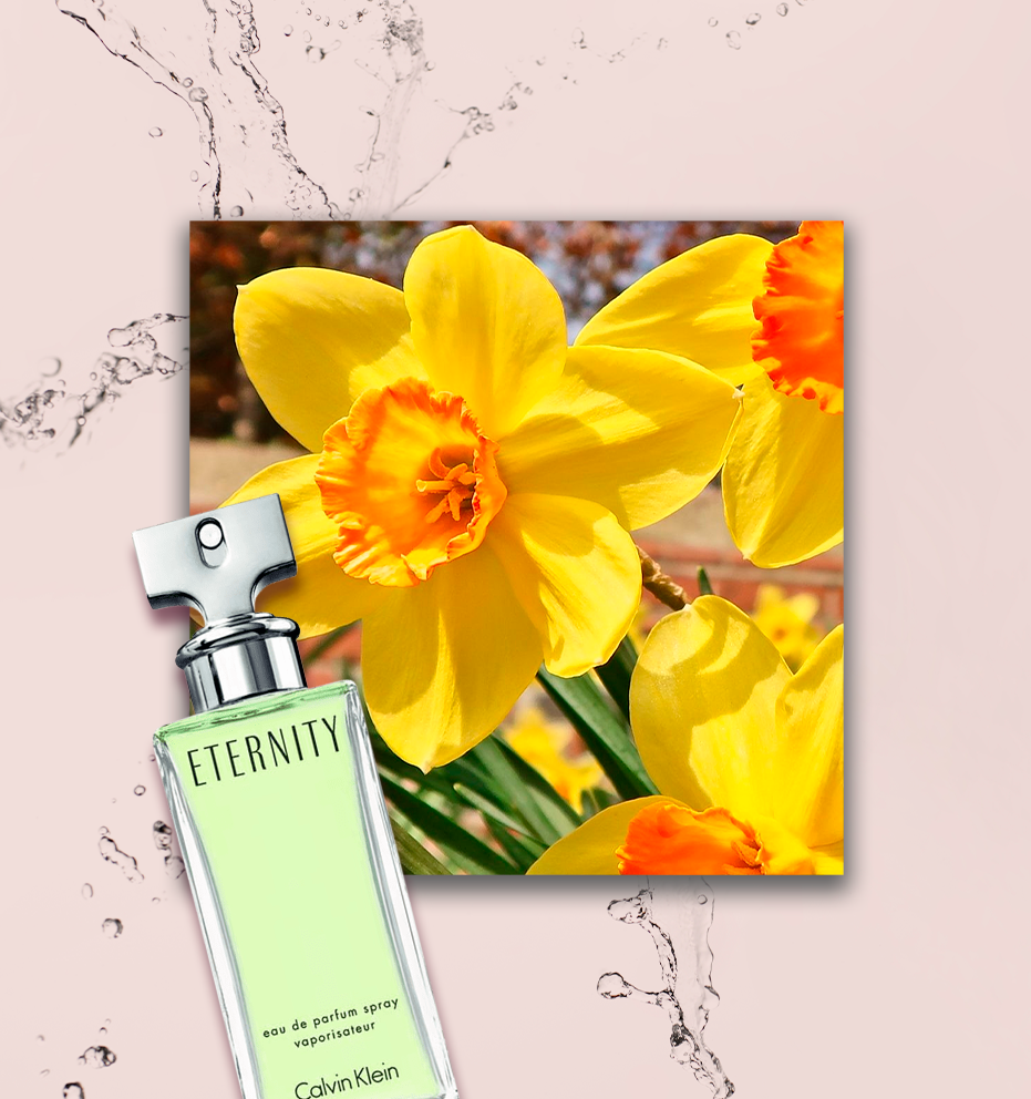 Perfume de narciso
