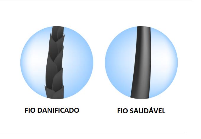 FIO SAUDÁVEL E DANIFICADO