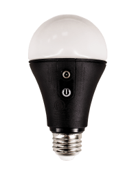 NYX Bulb