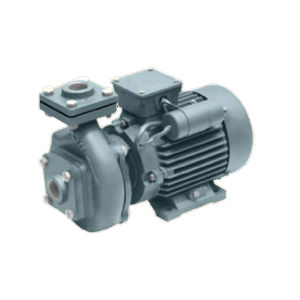 OSWAL MONOBLOCK PUMPSET SINGLE PHASE 1 HP 2880 RPM