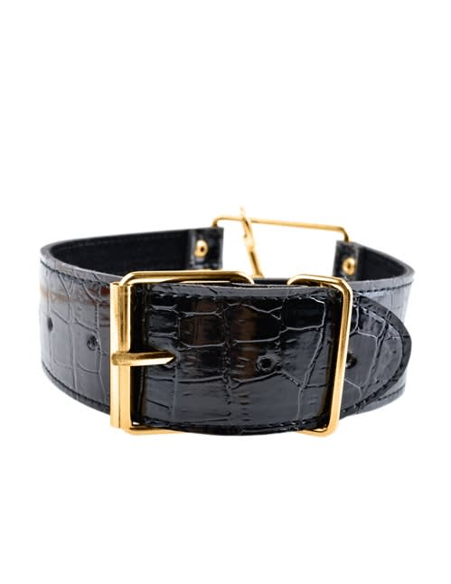 Fetish Fantasy Gold Collar & Leash - Halsband med koppel