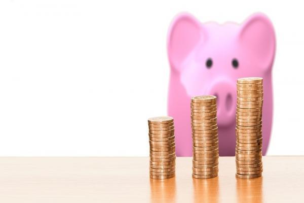 子豚とコイン