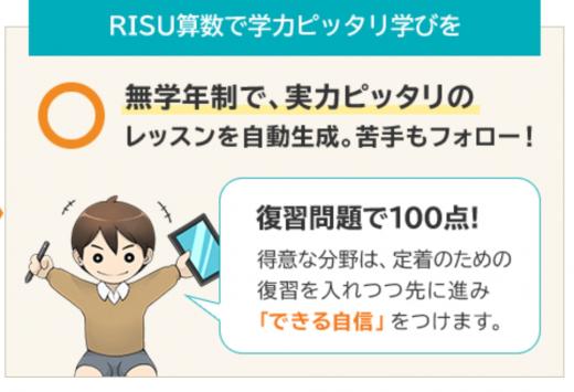 RISU算数無学年制の画像